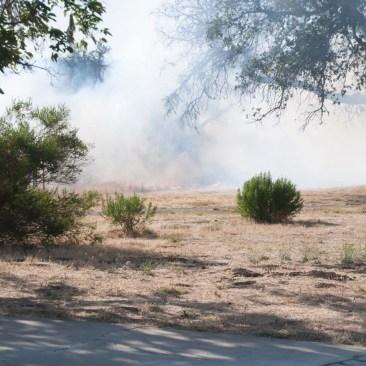 Brushfire1WebLG