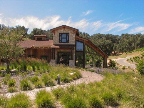 Halter Ranch Vineyard-3WebLG