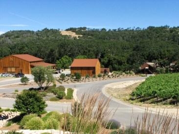 Halter Ranch Vineyard-4WebLG