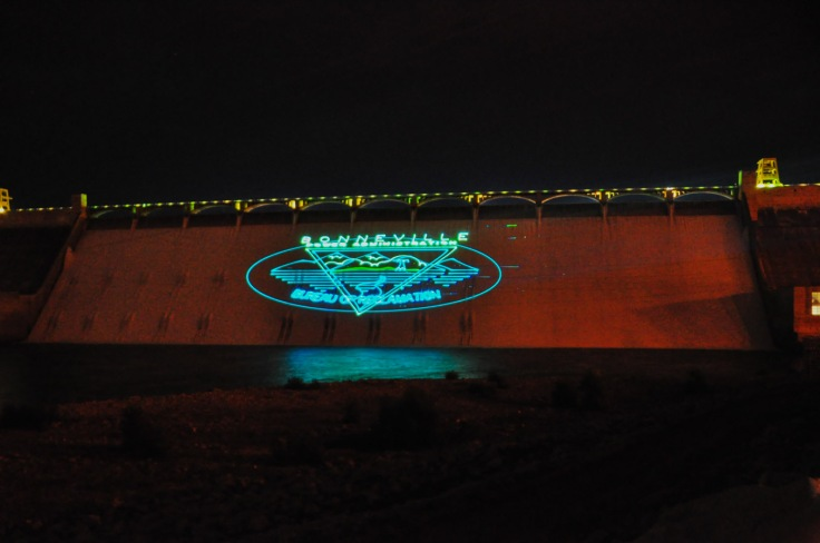 Grand Coulee Light Show 9WebLG
