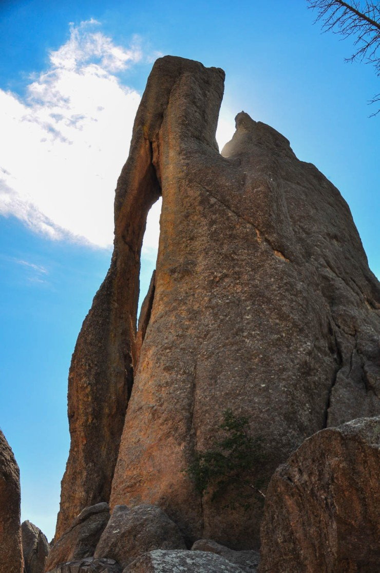 Needles Highway-Needles EyeWebLG