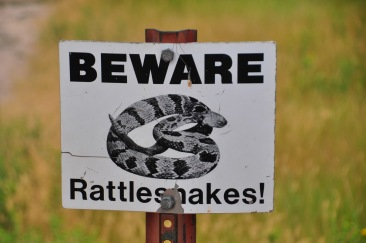 Rattlesnake SignWebLG