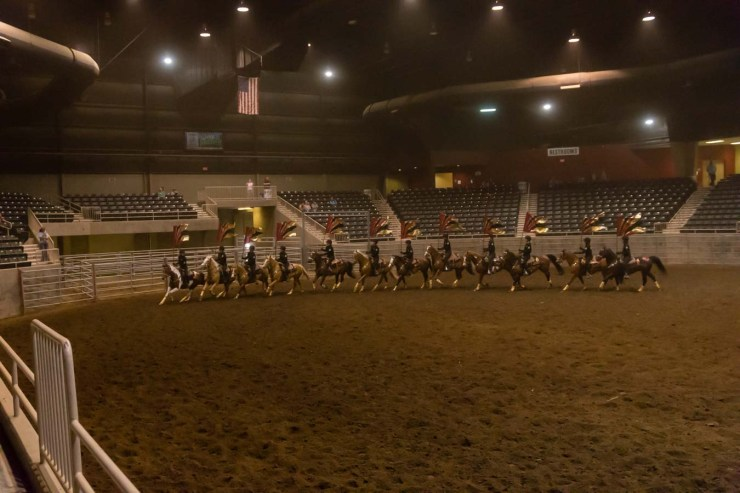 Horse Show4