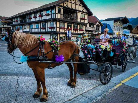 Leavenworth Carriage